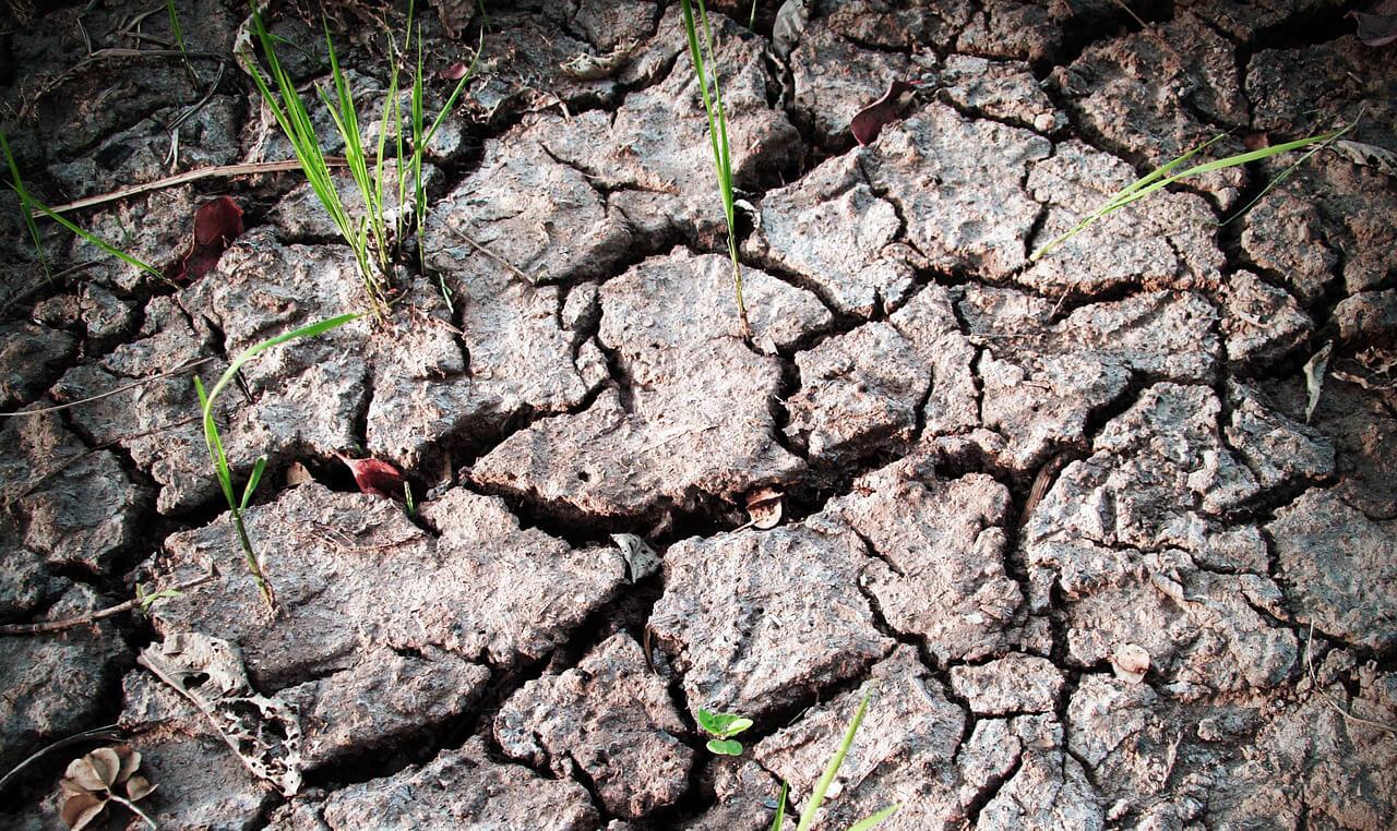 Meteorológiai szolgálat: fokozódik a szárazság