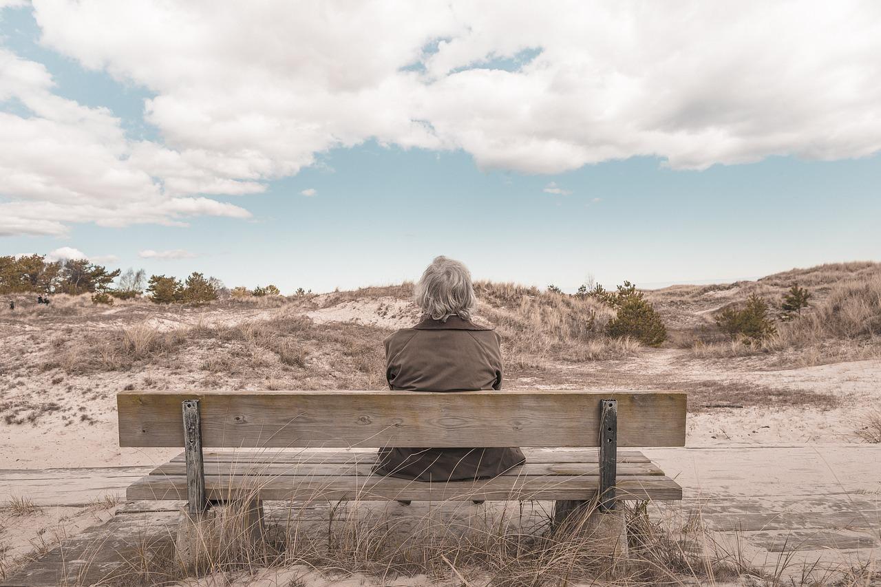 Az agyi öregedés előrejelzésén dolgoznak magyar kutatók
